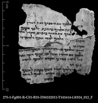 Part of the Book of Genesis. Photo by Shai Halevi, courtesy of Israel Antiquities Authority